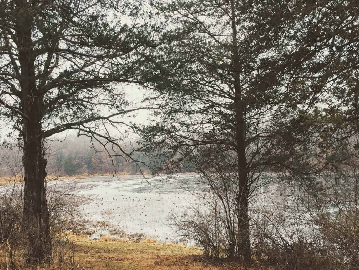 Busch Conservation area lake