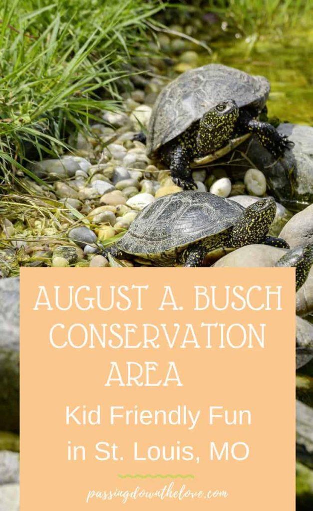 Busch Conservation area