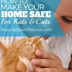How to make your home safe for kids and cats