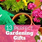 GARDENING GIFTS for her
