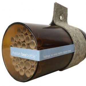 Mason Bee Bottle for the nature lover