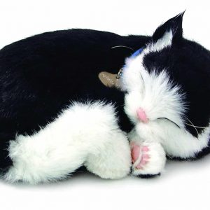 Electronic Breathable Cat Pet