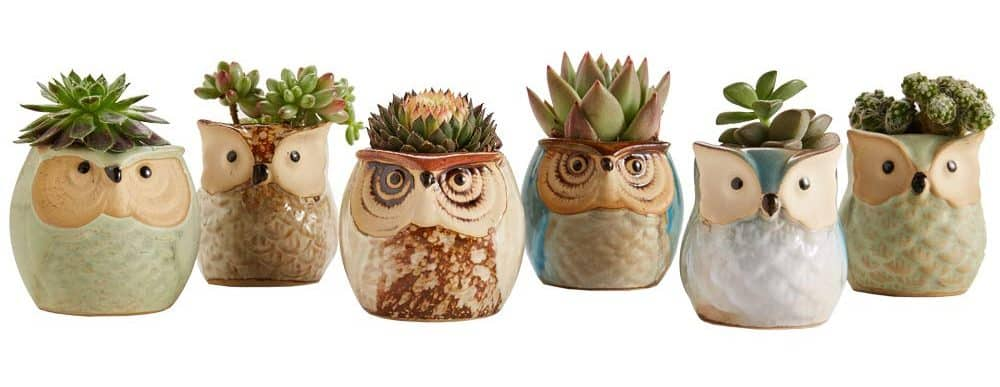 Owl planters Mother's Day gifts for Grandma